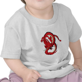 Los Muttahida Majlis-E-Amal rojos del dragón diseñ Camiseta