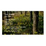 los narcisos amarillos acercan al bosque del pino, tarjetas de visita