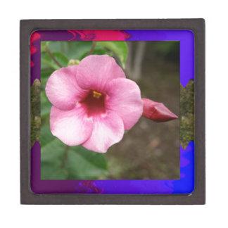 Los niños rosados de la datación del amor del caja de recuerdo de calidad