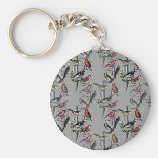 Los nuevos pájaros modelan los accesorios, gris de llavero