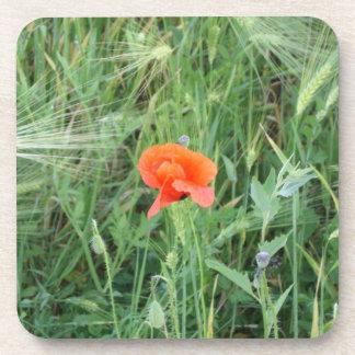 Los oídos del trigo y las flores 4 de la amapola - posavasos de bebidas