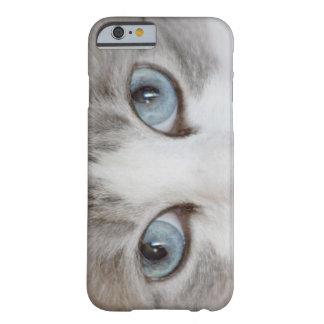 Los ojos de gato lindos funda de iPhone 6 barely there