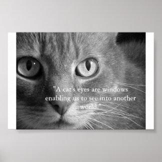 Los ojos de un gato… póster