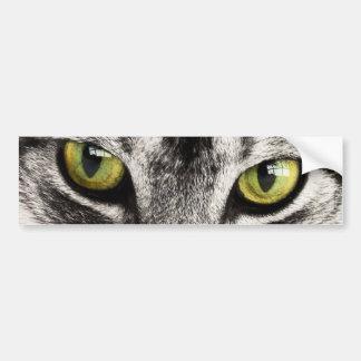 los ojos felinos y la lengua del gato hermoso se l etiqueta de parachoque