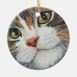 Los ojos lo tienen adorno de navidad