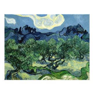 Los olivos de Vincent van Gogh (1889) Tarjeton