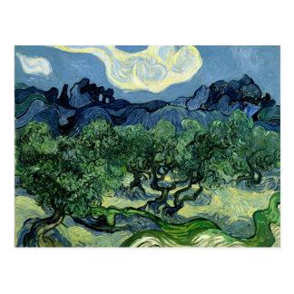 Los olivos de Vincent van Gogh (1889) Tarjeta Postal