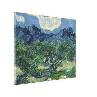 Los olivos - Van Gogh Lienzo Envuelto Para Galerias