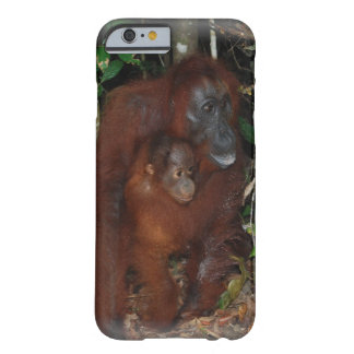 Los orangutanes miman y bebé funda para iPhone 6 barely there