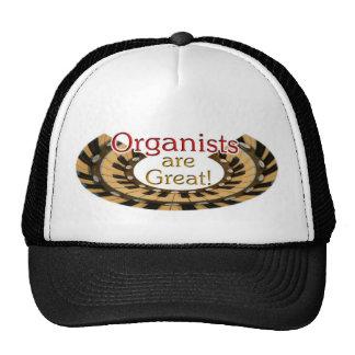 Los organistas son gran gorra - imagen redondeada