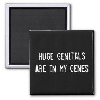 los órganos genitales enormes están en mis genes imanes para frigoríficos