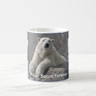 Los osos polares asaltan para siempre taza