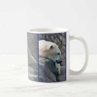 Los osos polares asaltan para siempre tazas