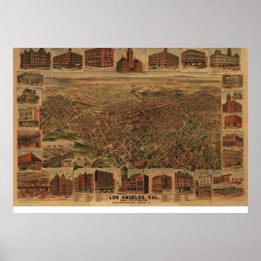 Los pájaros 1891 de Los Ángeles CA observan el map Poster