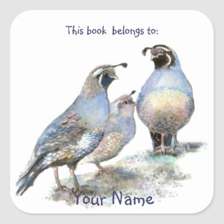 Los pájaros de las codornices de California este