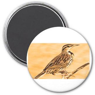 Los pájaros de Ontario embroman la escuela de la Imán Redondo 7 Cm