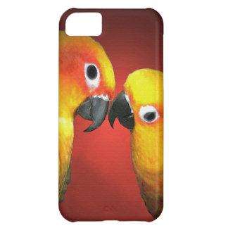 Los pájaros del amor
