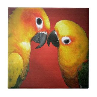 Los pájaros del amor azulejo cuadrado pequeño