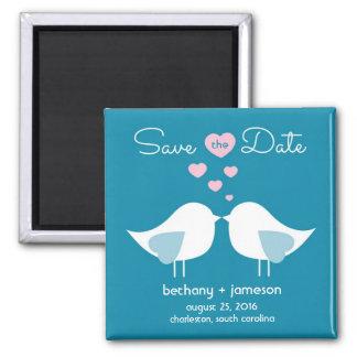 Los pájaros del amor del azul de pavo real ahorran imán cuadrado