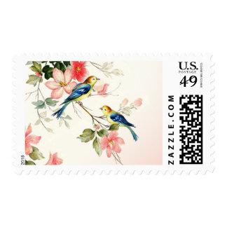 Los pájaros del amor del vintage que casan el | se envio