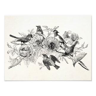 Los pájaros del gorrión del vintage personalizaron fotografía