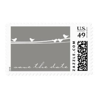 Los pájaros en un alambre ahorran el franqueo de timbres postales