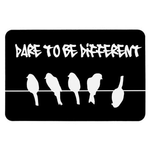 Los pájaros en un alambre - atrévase a ser diferen iman de vinilo