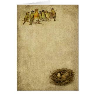 Los pájaros en una rama Prim tarjetas de nota de L
