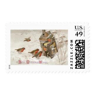 Los pájaros encuentran el refugio en navidad del envio