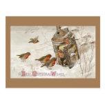 Los pájaros encuentran el refugio en navidad del postal