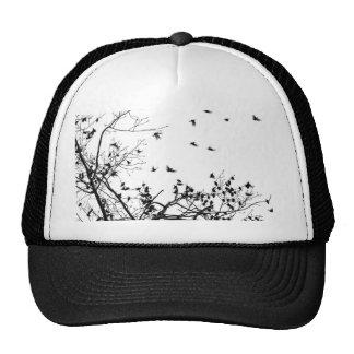 los pájaros negros gorros bordados