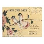 Los pájaros rosados del amor de la flor de cerezo
