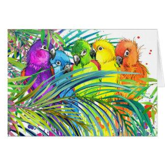Los pájaros tropicales le agradecen o esconden la tarjeta pequeña