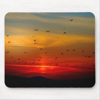 Los pájaros vuelan en la puesta del sol hermosa Mo Tapetes De Ratón