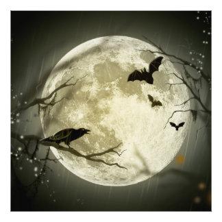 Los palos vuelan el cuervo se sientan delante de fotografias
