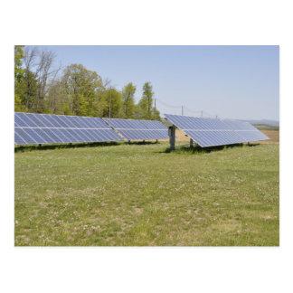 los paneles solares montados tierra postal