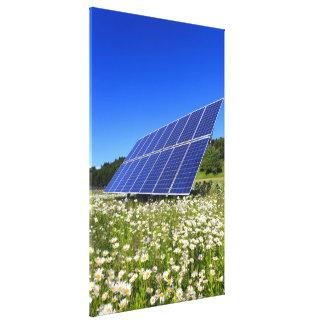 Los paneles solares y prado verde impresiones en lienzo estiradas