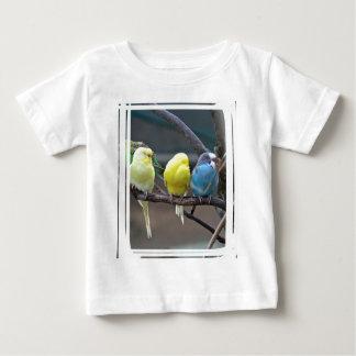 Los Parakeets coloridos brillantes Budgies repiten Tshirt
