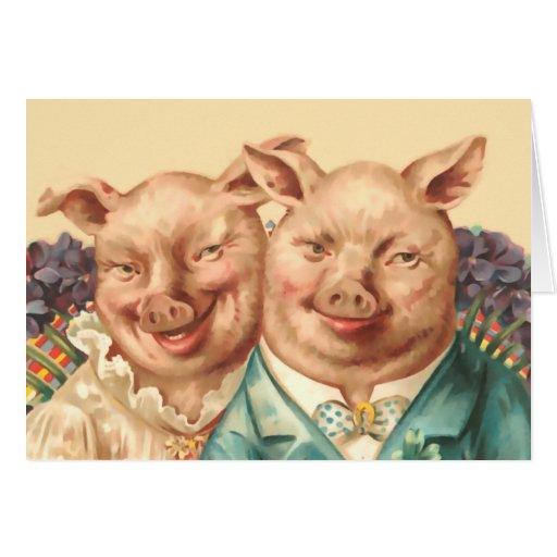 Los pares hermosos del cerdo tarjeta
