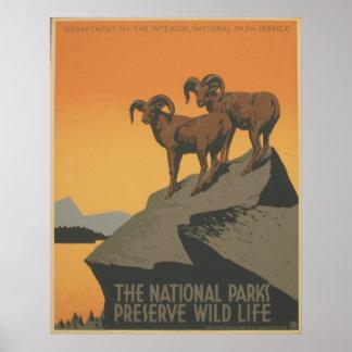 Los parques nacionales póster