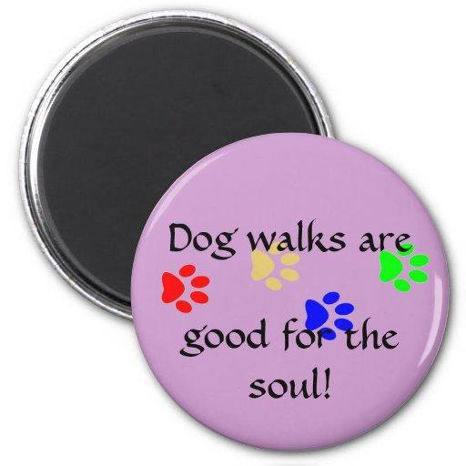¡Los paseos del perro son, bueno para el alma! imá Imán De Nevera