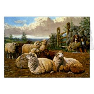 Los pastores fieles tarjetas