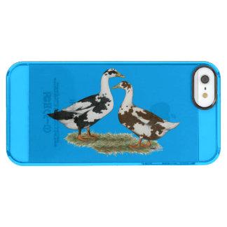 Los patos Ancona se emparejan Funda Clearly™ Deflector Para iPhone 5 De Uncommon