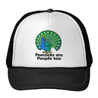 Los pavos reales son gente también gorras