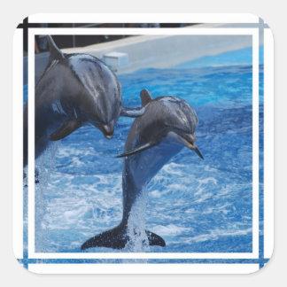 Los pegatinas de salto del delfín pegatina cuadrada