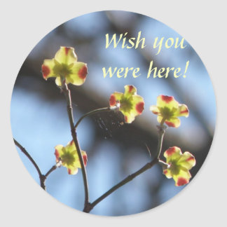 Los pegatinas del flor del árbol