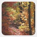 Los pegatinas encantados del bosque (1) calcomania cuadradas