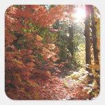 Los pegatinas encantados del bosque (2) calcomanías cuadradas