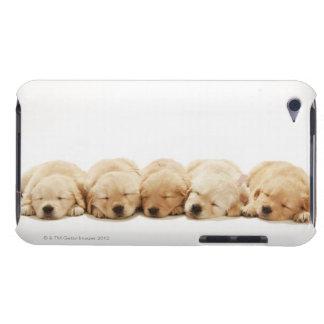 Los perritos del golden retriever iPod Case-Mate fundas