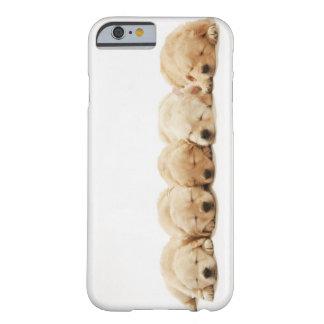 Los perritos del golden retriever funda para iPhone 6 barely there